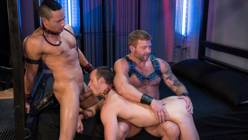 "Colby Jansen, Nate Grimes and Gabriel D'Alessandro in ""Fetish Findr"" part 4 from Fetish Force"