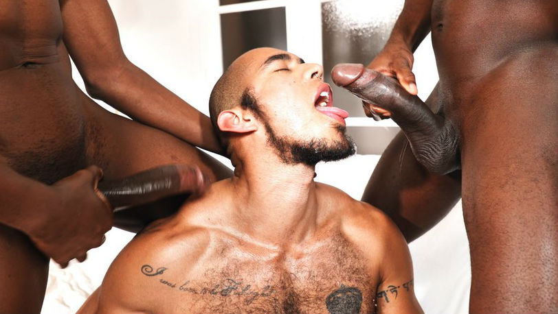 TimTales : Devon Lebron and Patrick Grau bareback Louis Ricaute's hole without mercy